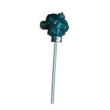 WZPK2-336雙支铠裝熱電阻