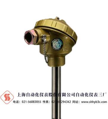WRN2-130耐高温熱電偶 上海自儀三廠