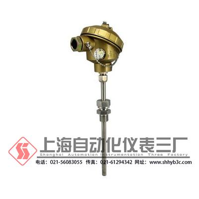 铠装熱電偶选型 上海自動化儀表三廠