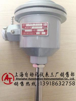 WZPK2-248雙支防爆铠裝熱電阻